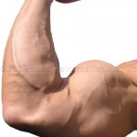gain-muscle-150x150